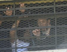 El lunes durante un motín el monitor Arnoldo Muñoz pide ayuda en una ventana del reclusorio. (Foto Prensa Libre: Érick Ávila).