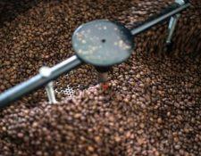 La productividad promedio prevista para dos variedades debería retroceder 7.5%, a 24 mil 35 sacos por hectárea. (Foto Prensa Libre: Hemeroteca)