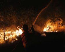 Incendios siguen activos en Portugal. (Foto Prensa Libre: EFE)