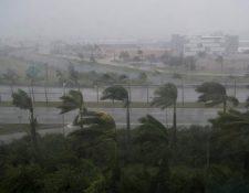 Los meteorólogos estadounidenses anunciaron este jueves que la temporada 2018 verá entre cinco y nueve huracanes, un poco menos que en 2017.(Foto Prensa Libre:AFP).