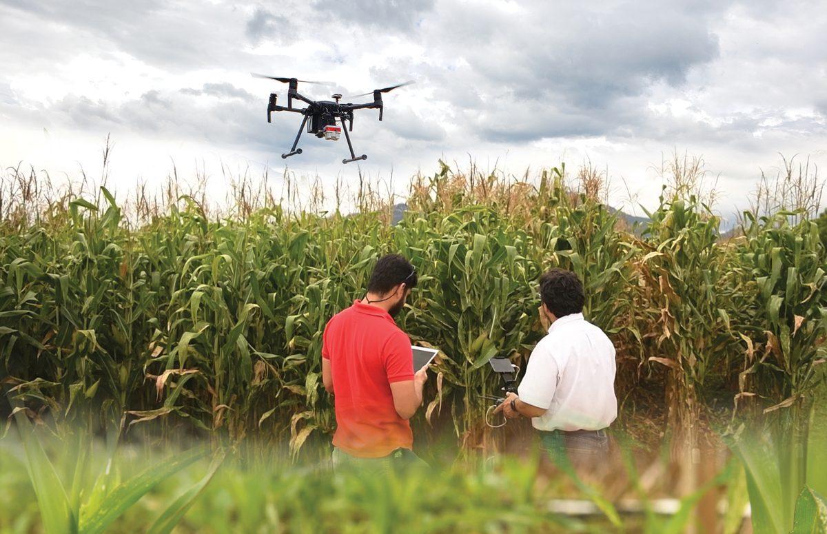El agro, pieza fundamental en el desarrollo de Latinoamérica
