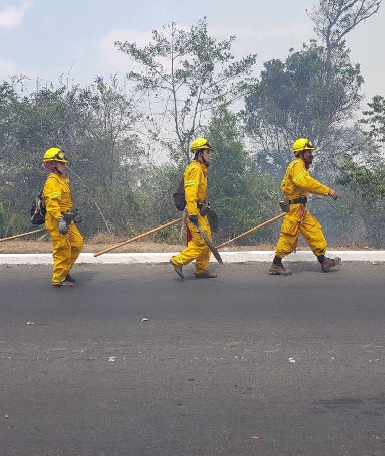 La Brigada de Respuesta a Incendios Forestales de Conred se encuentra en el lugar para apoyar en la labor de los bomberos. (Foto Prensa Libre: Conred)