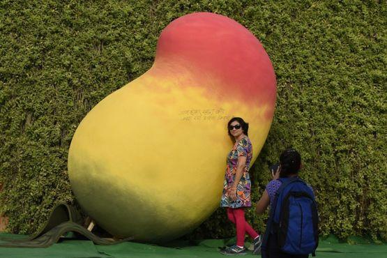 Advertencia para los fanáticos del mango: ¡el mango de la foto no es de verdad! GETTY IMAGES