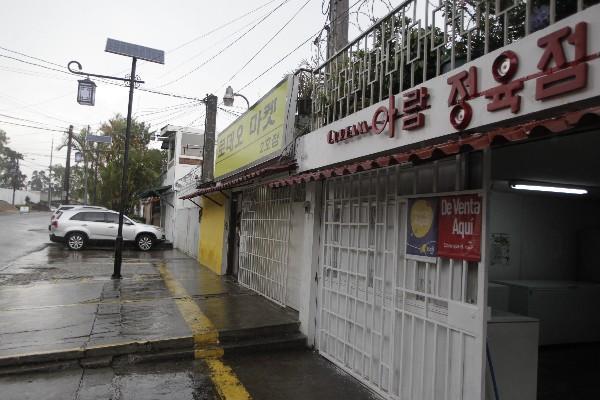 En La Avenida Seúl  se encuentran varios comercios donde se encuentran   artículos coreanos.
