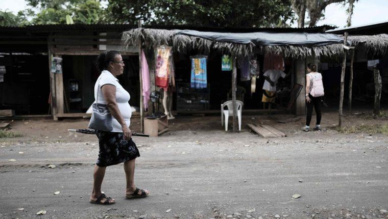 Empresa israelí busca financiar proyectos agrícolas y beneficiar a campesinos nicaragüenses en su economía familiar. (Foto Prensa Libre: EFE)