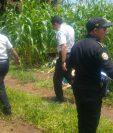 Uno de los cadáveres fue encontrado entre cañaverales.
