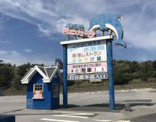 El parque acuático Inubosaki Marine, en Japón, fue cerrado hace al menos nueve meses, en cuyo interior permanecen en el abandono decenas de pingüinos, peces, reptiles y el delfín Honey. (Foto Prensa Libre: Dolphin Proyect)