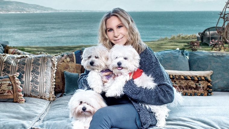 Barbra Streisand decidió clonar a su mascota Samantha (Foto Prensa Libre: Variety).