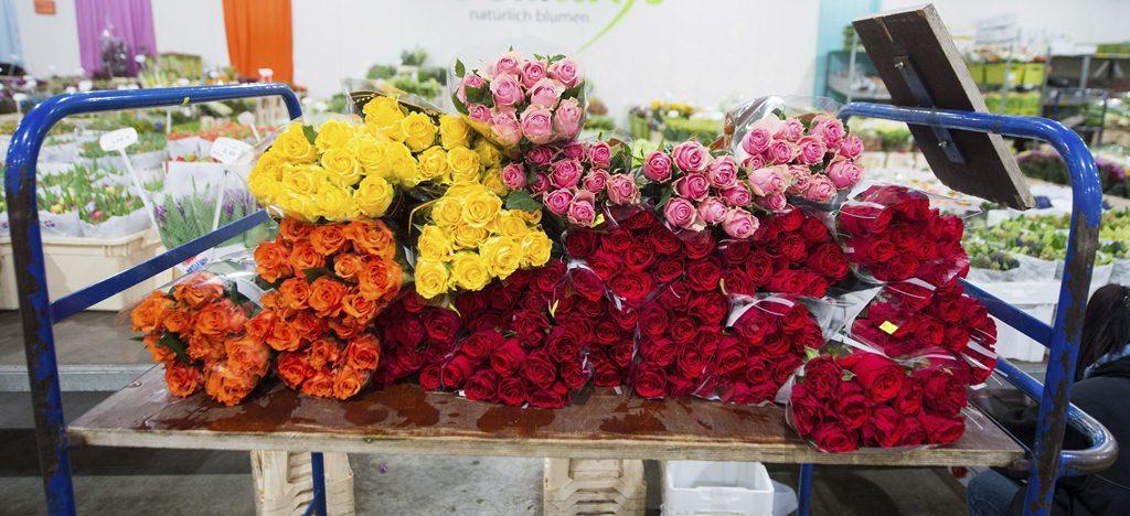 Miles de flores son comercializadas en el mundo como ocasión del día de San Valentín.