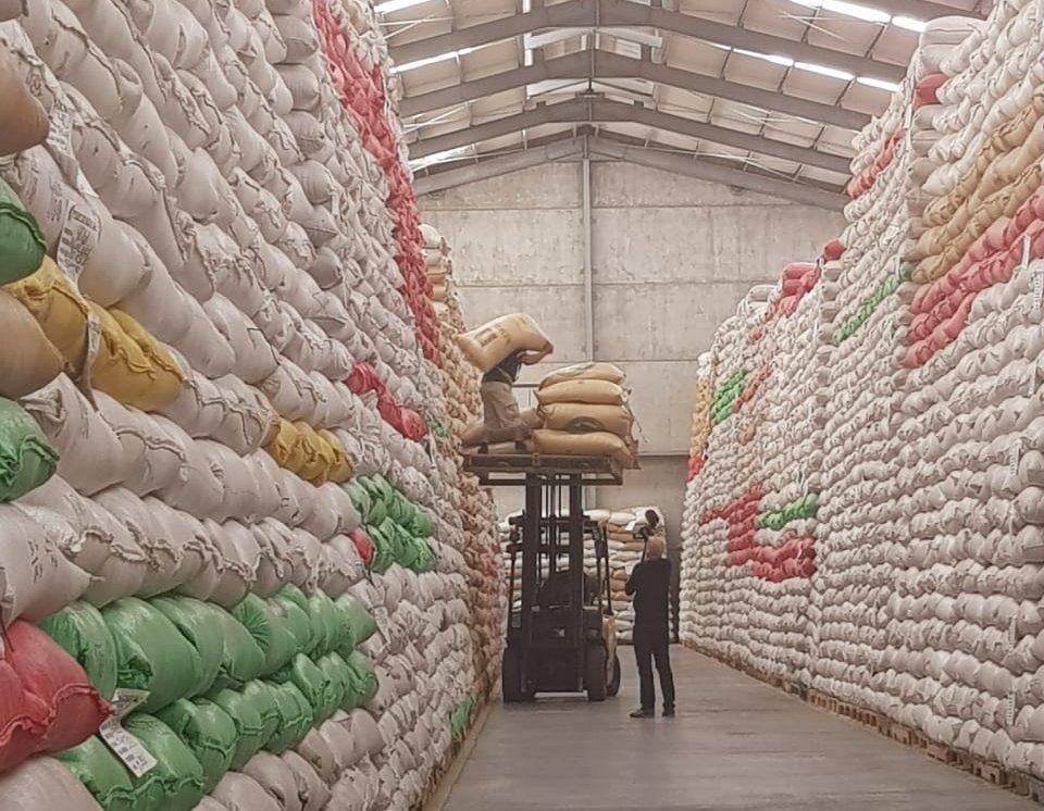 Guatemala exportó 4.3 millones de quintales de café oro en la cosecha 2017-18, registrando un leve incremento, según los datos de Anacafé. (Foto Prensa Libre: Hemeroteca)