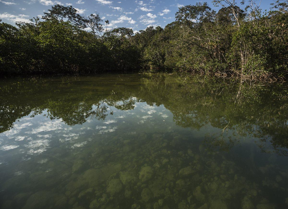 Bocas del Polochic es un área protegida localizada en El Estor, con diversidad de ecosistemas terrestres y los humedales.
