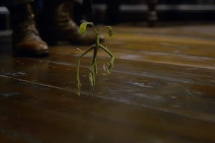 El pequeño Bowtruckle, que encantó a todos en la primera entrega, regresa para ayudar a su amigo Newt
