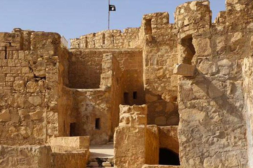 calor rigidez pulgada  Palmira, la perla de desierto – Prensa Libre