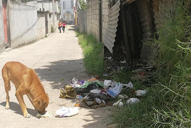 Mixco genera 200 toneladas de basura al día