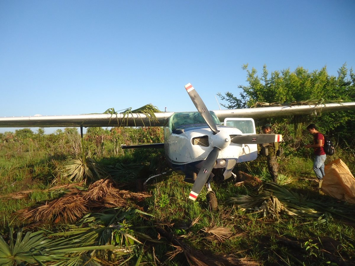 La avioneta estaba cubierta por árboles, para evitar que fuera hallada. (Foto Prensa Libre: Rigoberto Escobar)