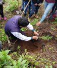 Jóvenes que colaboran con la forestación aprenden la forma en que deben sembrar los árboles. (Foto Prensa Libre: María José Longo)