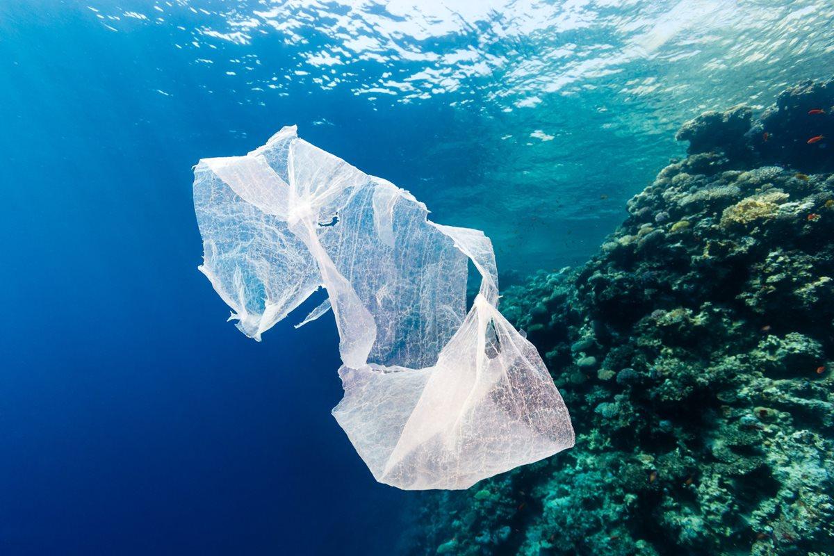 El objetivo de la iniciativa es evitar que el Lago de Atitlán sea contaminado por plástico. (Foto Prensa Libre: Cortesía Rescue the Planet)