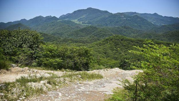 """Las montañas de Sinaloa son el territorio preferido del cartel que lidera el """"Chapo"""". AFP"""