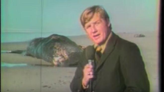 Paul Linnman y un camarógrafo cubrieron la noticia para una televisora local en 1970. Décadas después, el video se volvió viral. Foto: The Exploding Whale/YouTube.