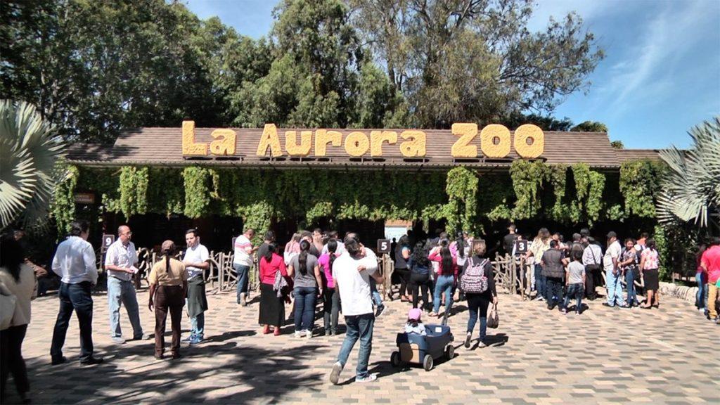 El Zoológico La Aurora fue abarrotado de visitantes.