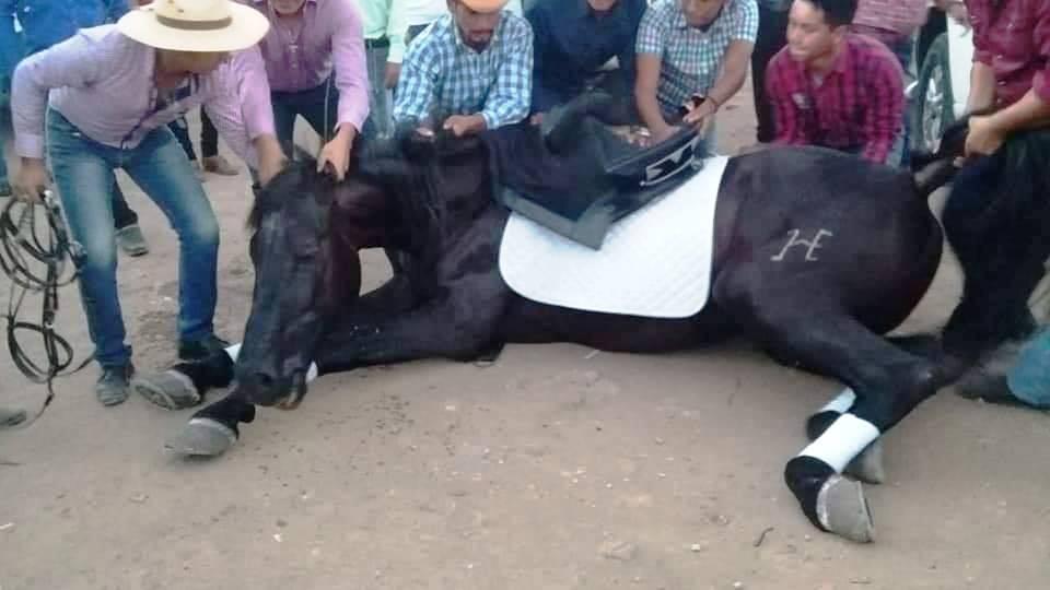Jinetes intentaron ayudar al equino pero sus esfuerzos fueron en vano. (Foto Prensa Libre: Mario Morales)