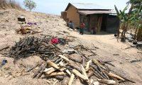 Familias campesinas  de la región de Jalapa y del corredor seco son presas  de la hambruna (Foto Prensa Libre: Hemeroteca PL)