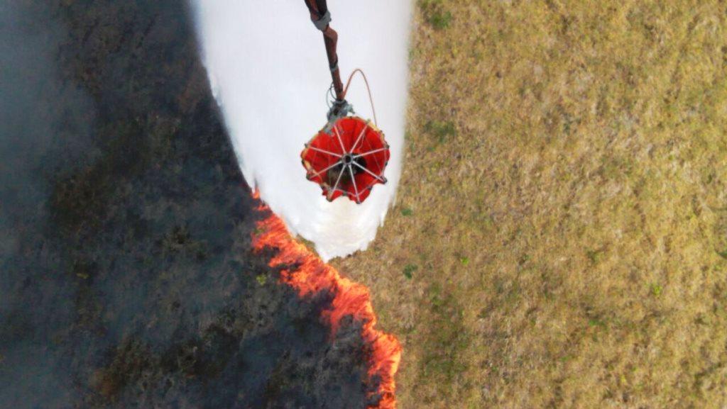 Una seis mil hectáreas de bosques han sido arrasadas por los 516 incendios forestales en el país. (Foto Prensa Libre: cortesía Conred)