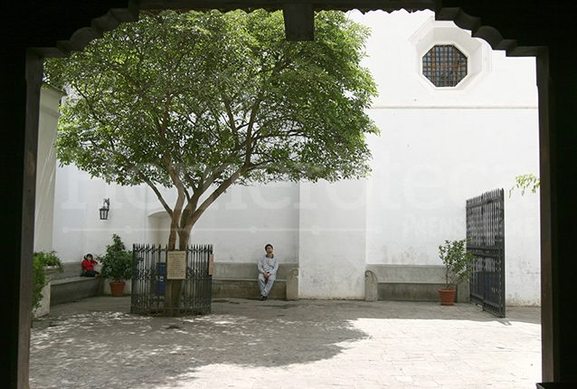 Árbol de Esquisúchil sembrado en la entrada a la tumba del Hermano Pedro en Antigua Guatemala. (Foto: Hemeroteca PL)