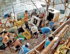 Pescadores de camarón marítimo dejaron de trabajar desde Miércoles Santo, lo que constituyó uno de los factores que contribuyeron a la escasez de producto. (Foto Prensa Libre: A. Interiano)