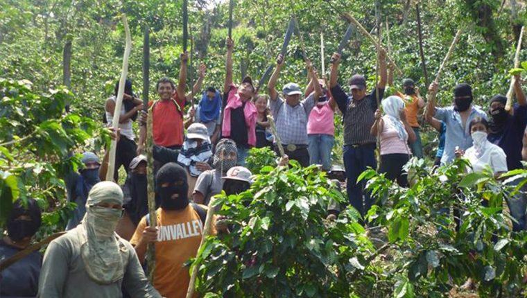 El grupo de invasores aparentemente es originario de Tajumulco, Tacaná y El Tumbador, San Marcos. (Foto Prensa Libre: Whitmer Barrera)