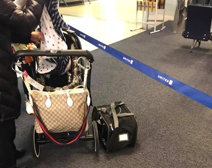 El cuerpo del perro es extraído del aeropuerto en Nueva York. (Foto Prensa Libre: Facebook/June Lara).