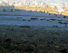 El clima  frío afecta a la parte alta de Quetzaltenango. (Foto Prensa Libre: Carlos Ventura)