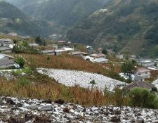 Campos en los Cuchumatanes se cubrieron de hielo. (Foto Prensa Libre: Mike Castillo)