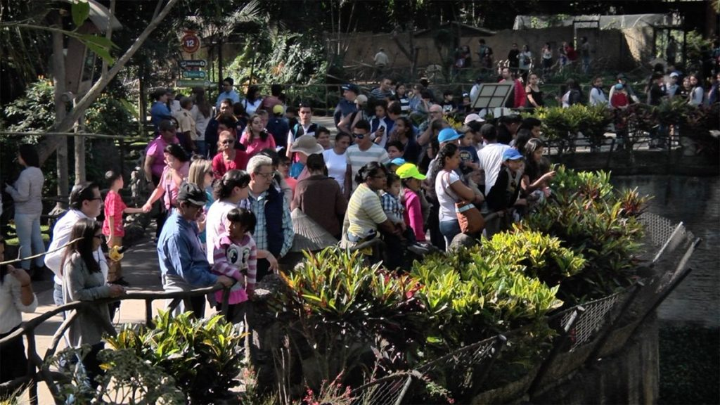 Decenas de visitantes observan la entrega de regalos.