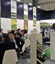 Las misiones comerciales en un 70% son gestión de negocios, van dirigidas a mercados con alto potencial para el desarrollo de nuevos negocios. (Foto Prensa Libre: Cortesía Agexport)