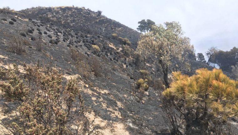 Unas 179 hectáreas fueron devastadas por el incendio forestal en el Volcán Santa María. (Foto Prensa Libre: Hemeroteca PL)