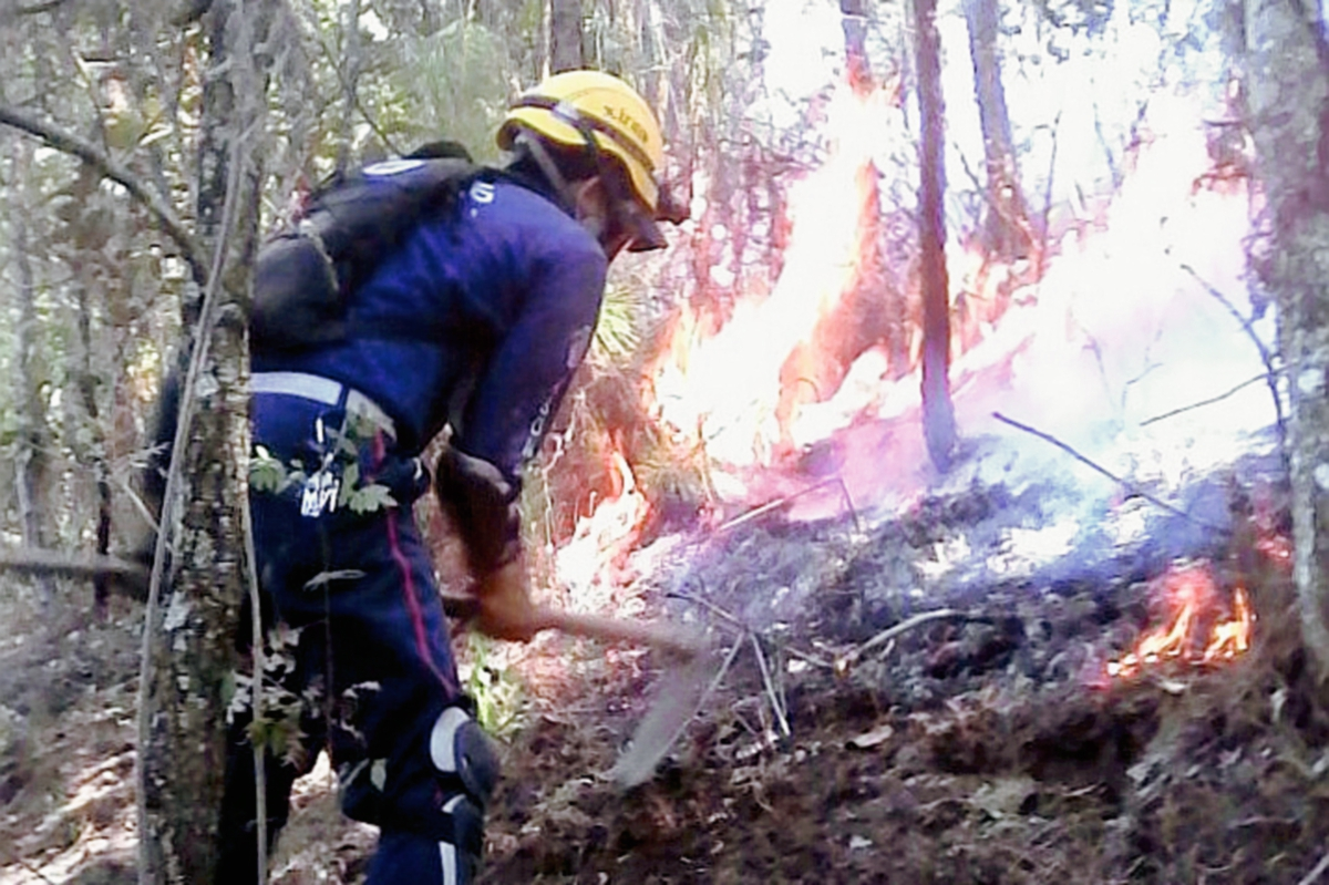 Incendios forestales afectan montañas de Quiché