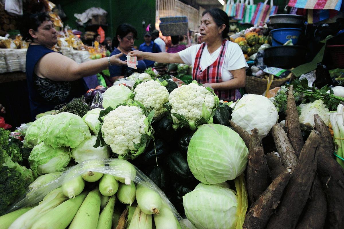 Centroamérica aprovecha innovaciones de ICTA para cultivo de yuca