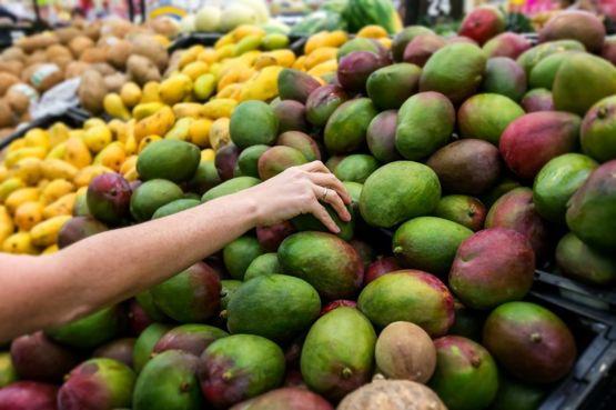 Los mangos se producen en numerosas latitudes. GETTY IMAGES