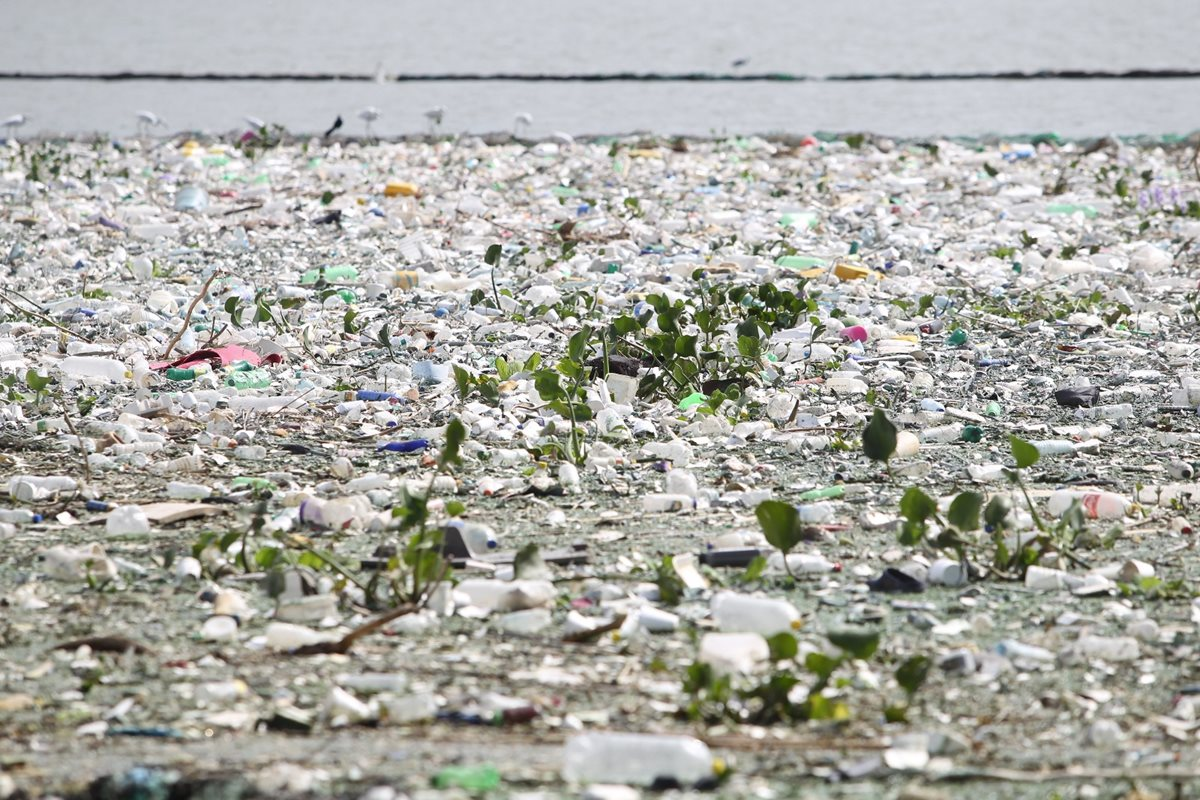 Diputados buscan normar uso de plástico reciclado