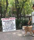 Identifican a abuela como autora de muertes de perros en México. Foto www.milenio.com