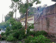 Una vivienda resulta con daños en la parte del techo a causa de la caída de un árbol por la lluvia y viento, en San Sebastián, Retalhuleu. (Foto Prensa Libre: Rolando Miranda)