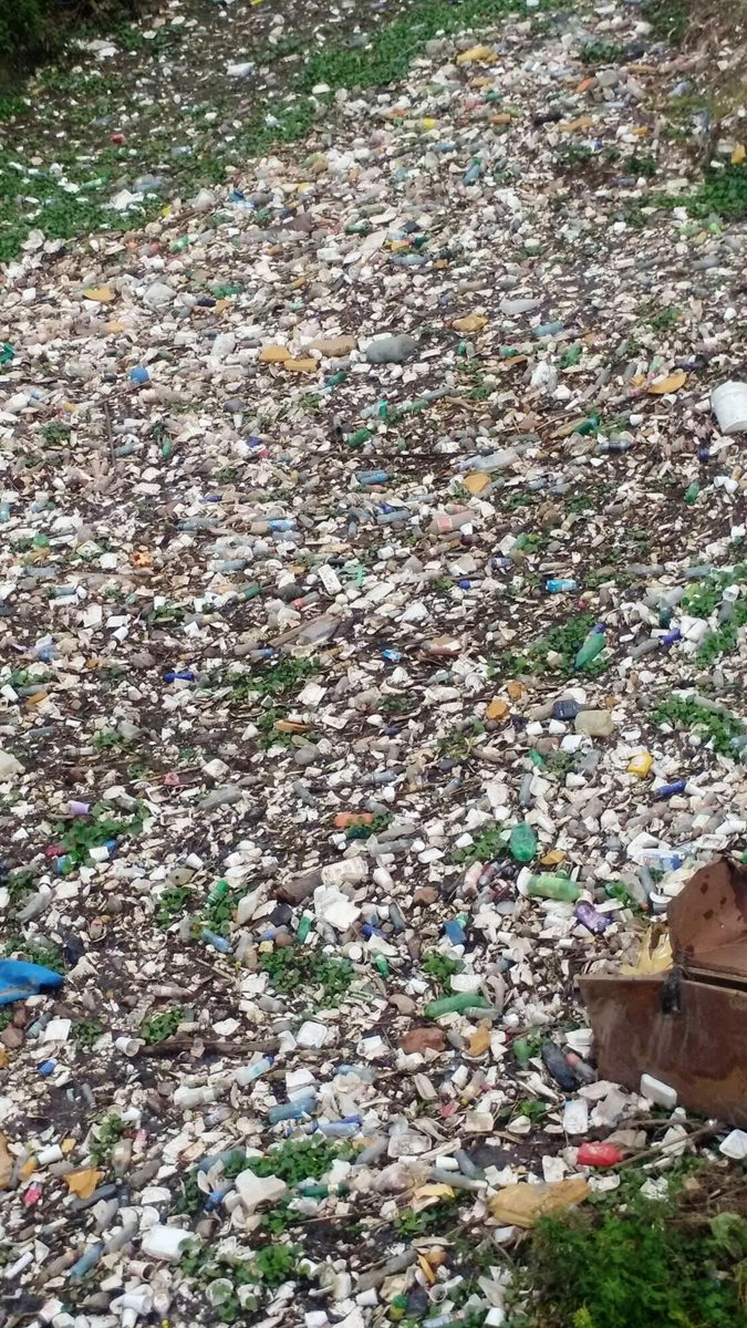 El plástico es uno de los principales desechos que se vierten en el río San José. (Foto Prensa Libre: Mario Morales)