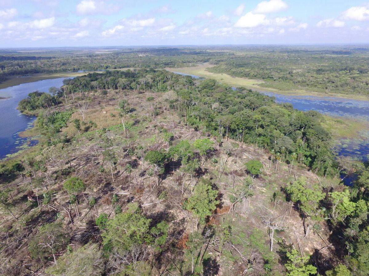 Descubren 14 manzanas taladas en parque Laguna del Tigre en San Andrés