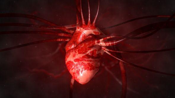 Hubo un tiempo en el que se pensaba que el corazón no bombeaba sangre. GETTY IMAGES