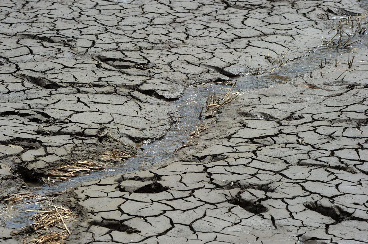 Ilustración. La escasez de agua en El Salvador está relacionada con cuatro años continuos de lluvia por debajo del promedio anual. (Foto Prensa Libre: AFP).