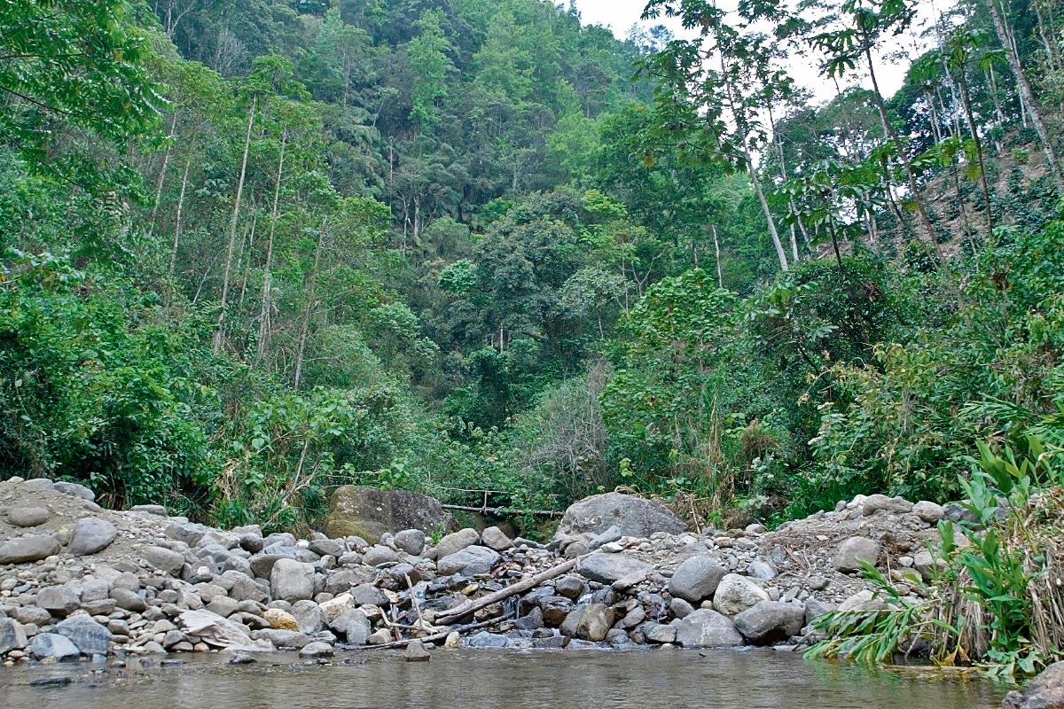 De acuerdo con especialistas internacionales en cambio climático, Guatemala tiene una biodiversidad única, pero también muchas vulnerabilidades. (Foto Prensa Libre: Hemeroteca PL)