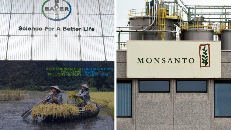 Bayer concluye la compra de Monsanto por 63 mil millones de dólares. Foto Prensa Libre:AFP).
