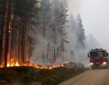 Suecia ha sido uno de los países más afectados por los incendios forestales derivados de la ola de calor que afecta a Europa. (AFP)