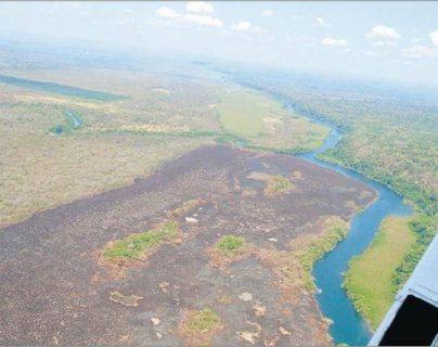 La deforestación avanza en el país sin que hasta el momento se vean planes claros del Gobierno para erradicarla / Daños en la biósfera maya. (Foto: Hemeroteca PL)